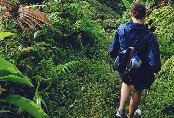 Frau wandert im Regenwald.
