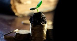 Geldstapel mit einer Pflanze.